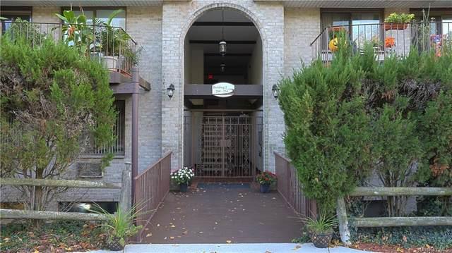 209 Kemeys Cove, Briarcliff Manor, NY 10510 (MLS #H6075769) :: William Raveis Baer & McIntosh