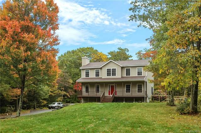 3 Masten Lake Court, Wurtsboro, NY 12790 (MLS #H6076726) :: William Raveis Baer & McIntosh