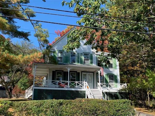 6658 State Route 52, Cochecton, NY 12726 (MLS #H6077114) :: Nicole Burke, MBA   Charles Rutenberg Realty