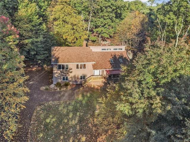 111 W Hook Road, Hopewell Junction, NY 12533 (MLS #H6077349) :: Nicole Burke, MBA   Charles Rutenberg Realty