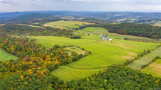 Homestead Farm Lane, Millerton, NY 12546 (MLS #H6077462) :: Frank Schiavone with William Raveis Real Estate
