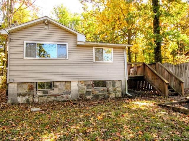 43 Higgins Trail, Monroe, NY 10950 (MLS #H6077922) :: William Raveis Baer & McIntosh