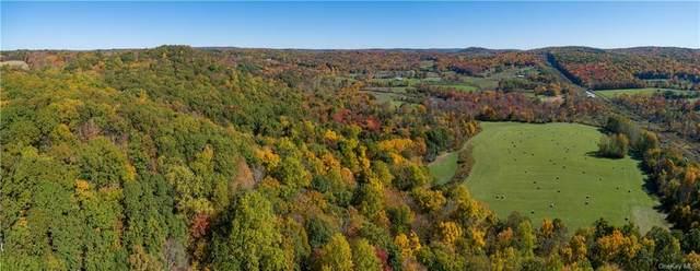 Brush Hill Road, Millbrook, NY 12545 (MLS #H6078125) :: Signature Premier Properties