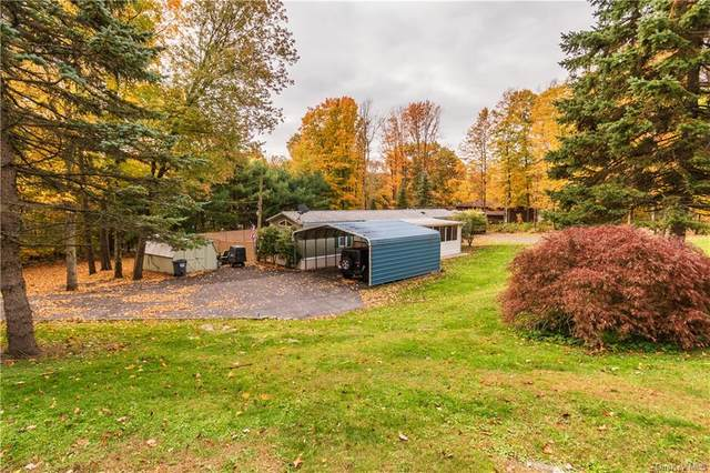 93 Carboy Road, Middletown, NY 10940 (MLS #H6078127) :: Frank Schiavone with William Raveis Real Estate