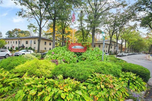 48 Manchester Road 1R, Eastchester, NY 10709 (MLS #H6078207) :: Nicole Burke, MBA | Charles Rutenberg Realty