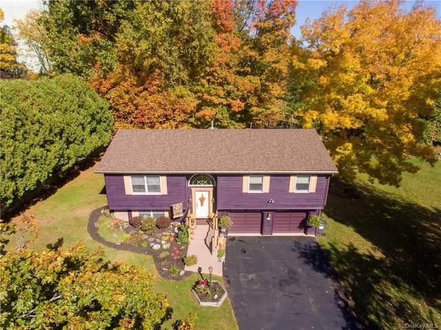 59 Oakland Avenue, Walden, NY 12586 (MLS #H6078209) :: Kendall Group Real Estate   Keller Williams