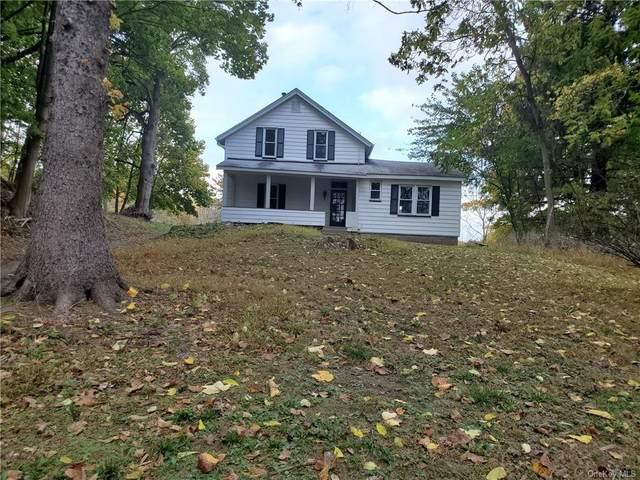 53 Old Post Road, Marlboro, NY 12542 (MLS #H6078412) :: Kendall Group Real Estate | Keller Williams