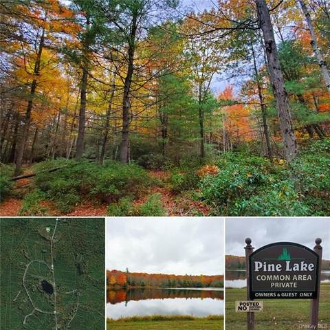 Lot 24 County Route 56, Wurtsboro, NY 12790 (MLS #H6078480) :: Mark Seiden Real Estate Team