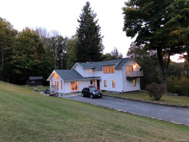 340 Upper Pine Kill Road, Wurtsboro, NY 12790 (MLS #H6078565) :: William Raveis Baer & McIntosh