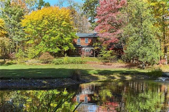 3 Buttonwood Lane, Rhinebeck, NY 12572 (MLS #H6079141) :: McAteer & Will Estates | Keller Williams Real Estate