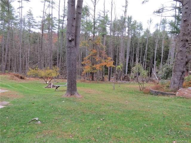 87 Hickory Lane, Narrowsburg, NY 12764 (MLS #H6079184) :: McAteer & Will Estates | Keller Williams Real Estate