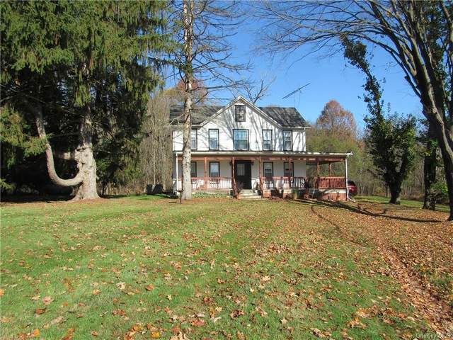 372 County Route 22, Slate Hill, NY 10973 (MLS #H6080476) :: Cronin & Company Real Estate