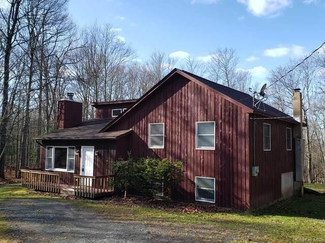 89 Split Rock Road, Barryville, NY 12719 (MLS #H6082681) :: McAteer & Will Estates | Keller Williams Real Estate