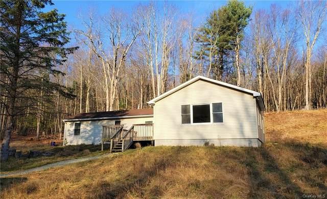 89 Mcguire Road, Woodbourne, NY 12788 (MLS #H6083421) :: Mark Seiden Real Estate Team