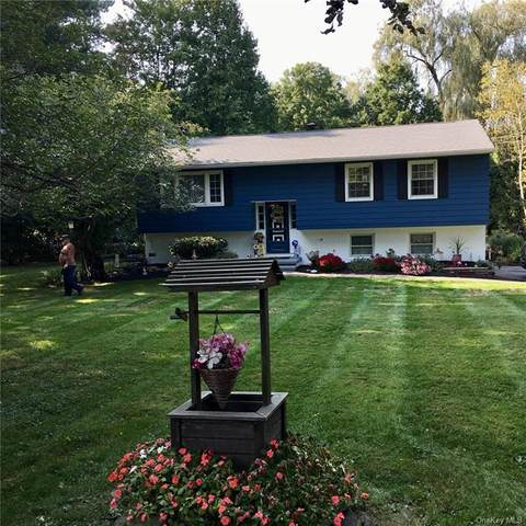261 Hibernia Road, Salt Point, NY 12578 (MLS #H6084040) :: Nicole Burke, MBA | Charles Rutenberg Realty