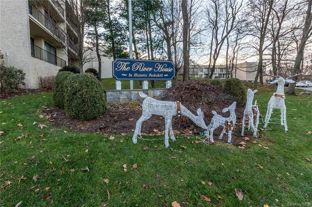 150 Overlook Avenue Ph-A, Peekskill, NY 10566 (MLS #H6085086) :: William Raveis Baer & McIntosh