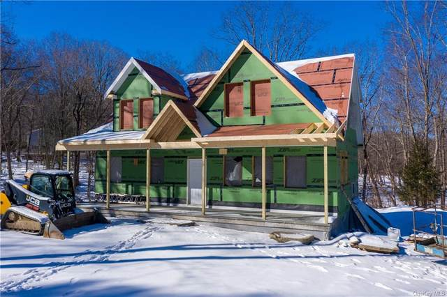 16 Anderson Road, Pawling, NY 12564 (MLS #H6087609) :: Signature Premier Properties