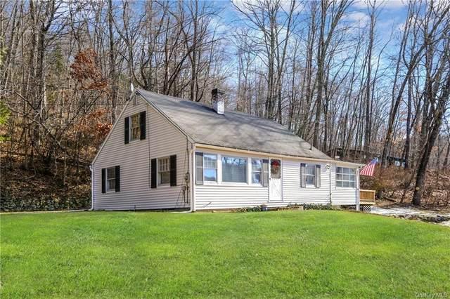 279 Bog Hollow Road, Wassaic, NY 12592 (MLS #H6088219) :: Nicole Burke, MBA | Charles Rutenberg Realty