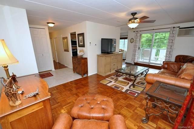 372 Central Park Avenue 2T, Scarsdale, NY 10583 (MLS #H6088339) :: Carollo Real Estate