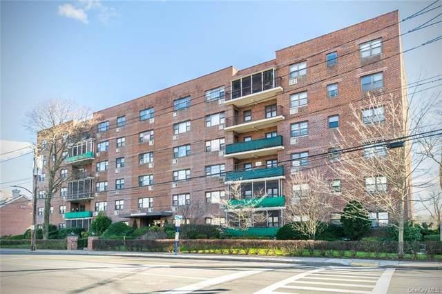 266 Pelham Road 5A, New Rochelle, NY 10805 (MLS #H6088535) :: William Raveis Baer & McIntosh