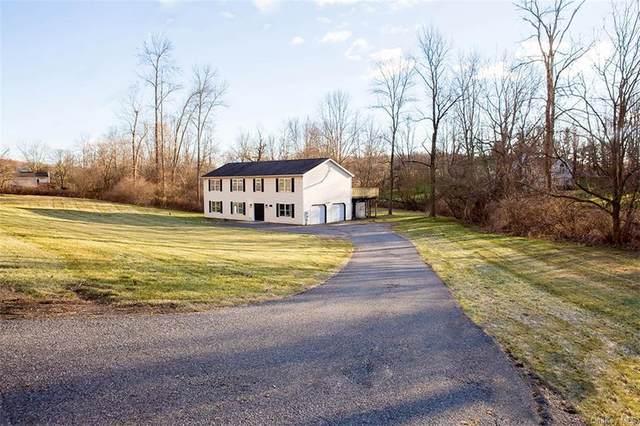 65 Ludingtonville Road, Holmes, NY 12531 (MLS #H6088538) :: Kevin Kalyan Realty, Inc.