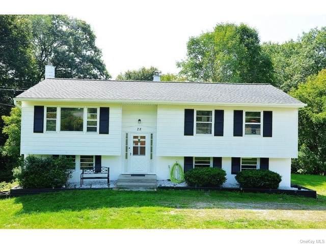 28 David Road, Millerton, NY 12546 (MLS #H6088950) :: Mark Boyland Real Estate Team