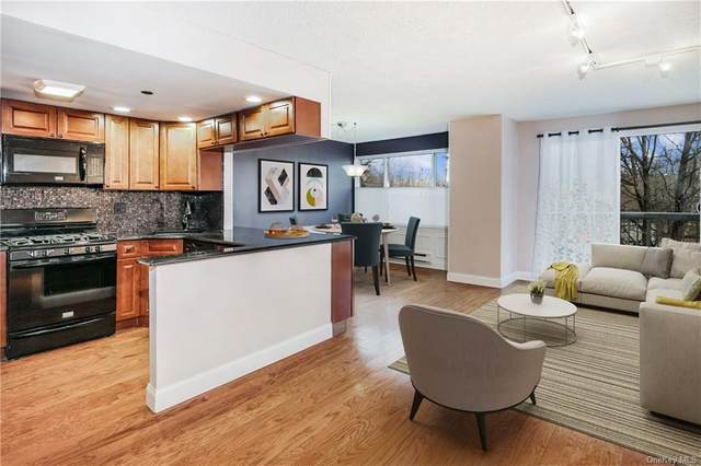 10 Stewart Place 1AE, White Plains, NY 10603 (MLS #H6089055) :: Signature Premier Properties