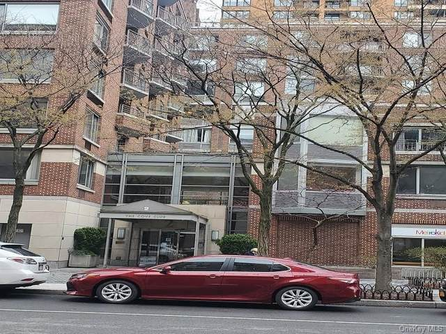2 S End Avenue 9J, Newyork, NY 10280 (MLS #H6089358) :: Carollo Real Estate