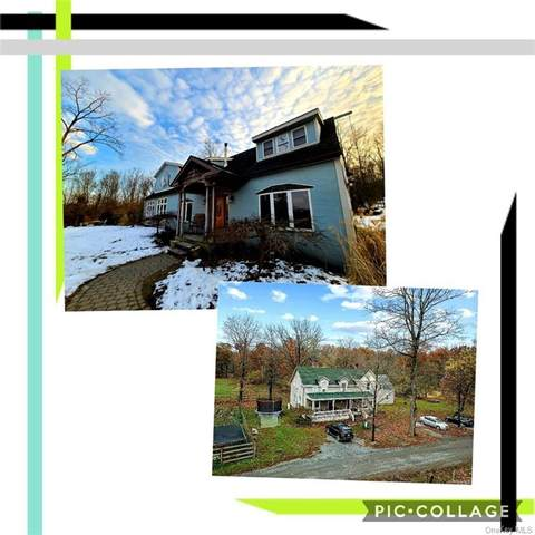 82 Knoell Road, Goshen, NY 10924 (MLS #H6089657) :: Mark Seiden Real Estate Team