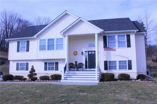 2 Horse Shoe Court, Goshen, NY 10924 (MLS #H6089898) :: Mark Seiden Real Estate Team