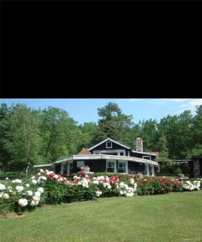 44 Kingfisher Trail, Wurtsboro, NY 12790 (MLS #H6090154) :: Kevin Kalyan Realty, Inc.