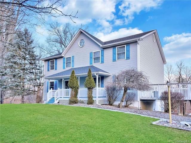 6 Pampas Lane, Newburgh, NY 12550 (MLS #H6091720) :: William Raveis Baer & McIntosh