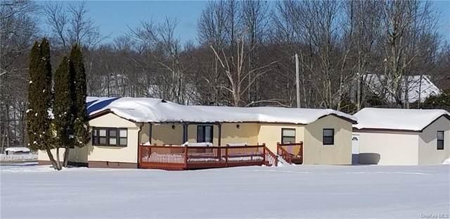 421 Gables Road, Narrowsburg, NY 12764 (MLS #H6094231) :: McAteer & Will Estates | Keller Williams Real Estate