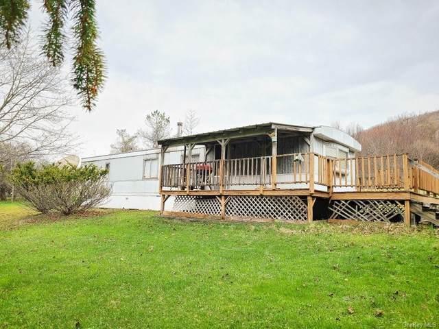 15259 County Highway 17, Roscoe, NY 12776 (MLS #H6095421) :: Signature Premier Properties