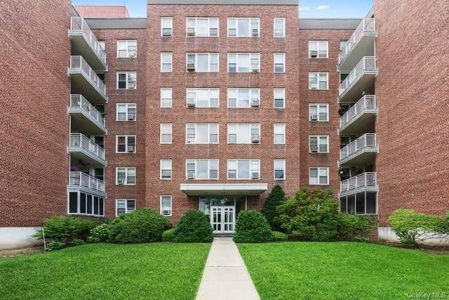 1255 North Avenue #60, New Rochelle, NY 10804 (MLS #H6095733) :: RE/MAX RoNIN