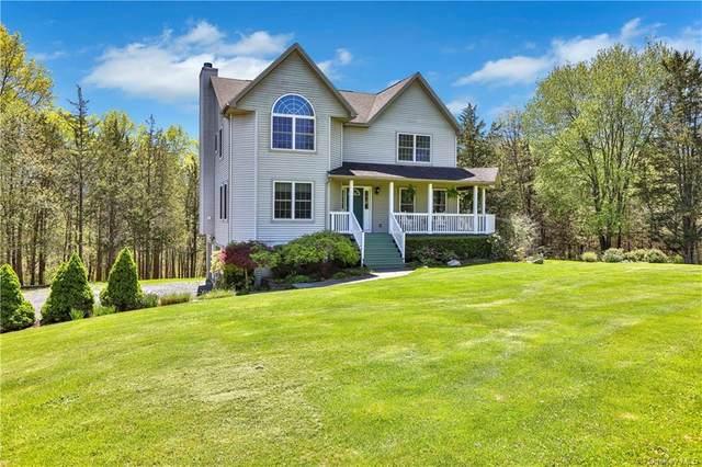 617 Albany Post Road, New Paltz, NY 12561 (MLS #H6096306) :: Signature Premier Properties