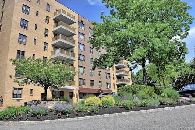 25 Stewart Place #210, Mount Kisco, NY 10549 (MLS #H6096864) :: Kendall Group Real Estate | Keller Williams