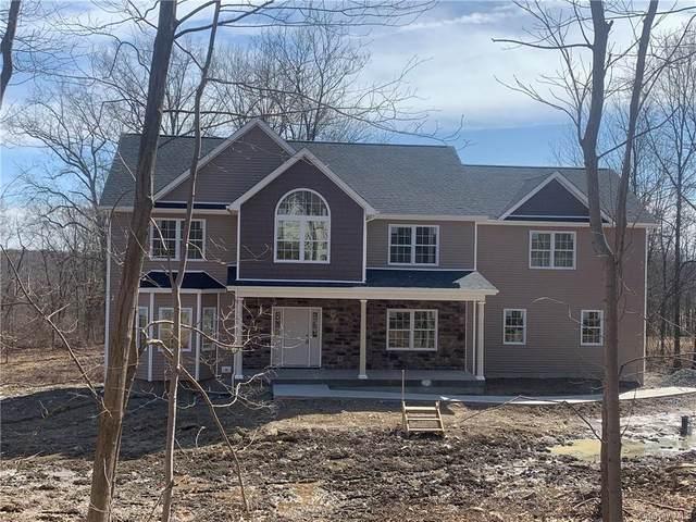 1344 County Road 17, Walden, NY 12586 (MLS #H6097015) :: McAteer & Will Estates | Keller Williams Real Estate