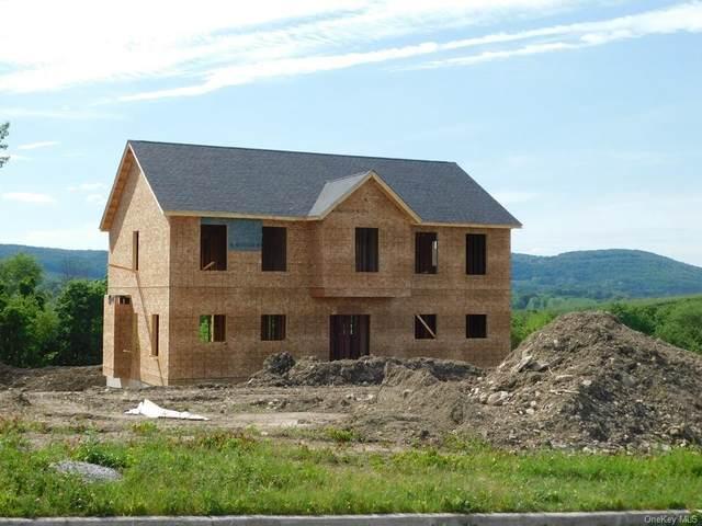 30 Meadow View Drive, Marlboro, NY 12542 (MLS #H6098250) :: Carollo Real Estate