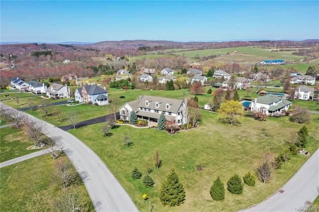 8 Dolly Lane, Lagrangeville, NY 12540 (MLS #H6100459) :: Signature Premier Properties
