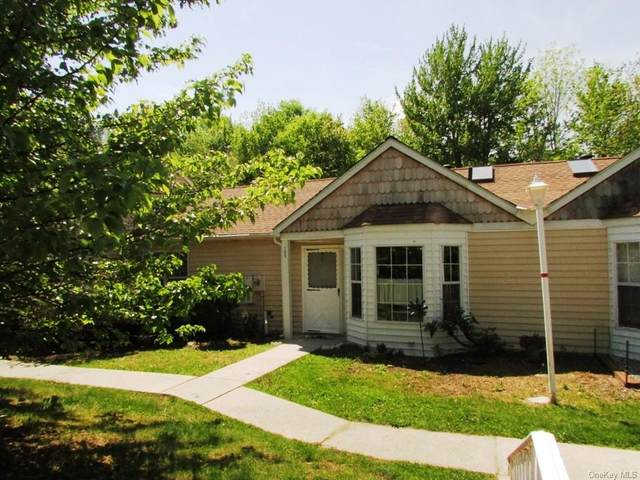 155 Hidden Ridge Drive, Monticello, NY 12701 (MLS #H6102548) :: Barbara Carter Team