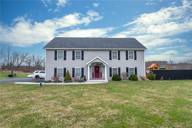 53 Donnelly Farm Road, Walden, NY 12586 (MLS #H6103446) :: McAteer & Will Estates | Keller Williams Real Estate