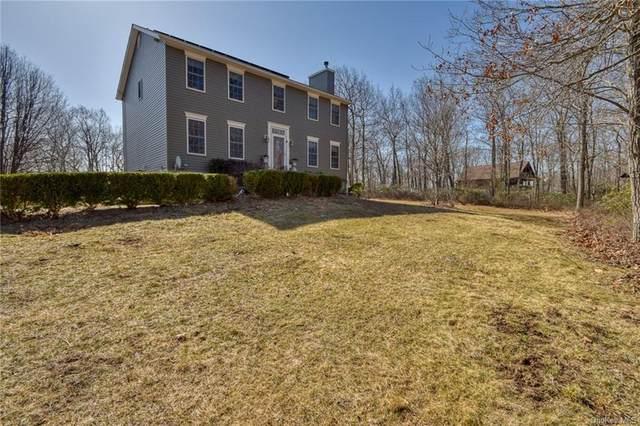 558 Oregon Trail, Pine Bush, NY 12566 (MLS #H6103713) :: Cronin & Company Real Estate