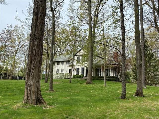 33 Nine Partners Lane, Millbrook, NY 12545 (MLS #H6104339) :: Signature Premier Properties