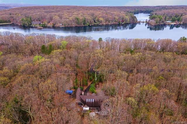 333 S Shore Drive, Wurtsboro, NY 12790 (MLS #H6104373) :: McAteer & Will Estates | Keller Williams Real Estate