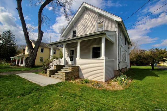 17 Garden Street, Red Hook, NY 12571 (MLS #H6104595) :: Signature Premier Properties