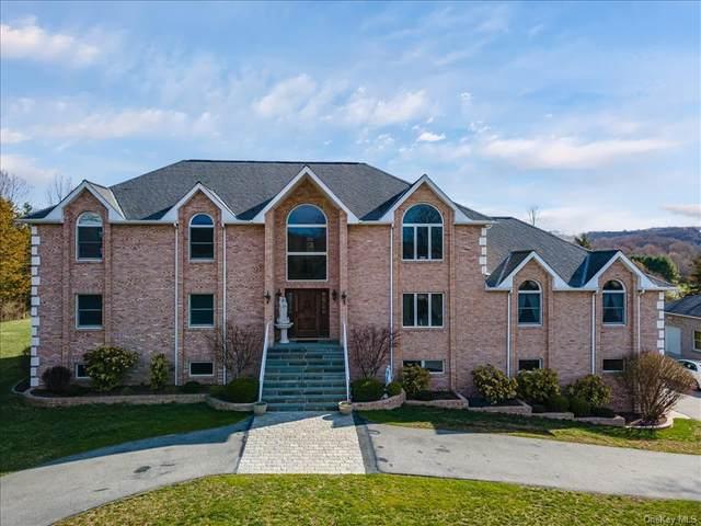 11 Ridgeview Lane, Pleasant Valley, NY 12569 (MLS #H6105065) :: Signature Premier Properties