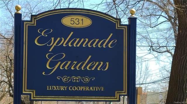 531 E Lincoln Avenue 6K, Mount Vernon, NY 10552 (MLS #H6105166) :: RE/MAX RoNIN