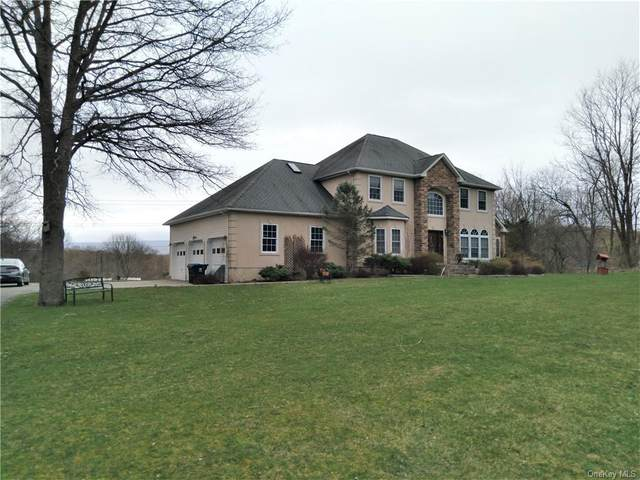 2 Blossom Court, Blooming Grove, NY 10914 (MLS #H6105777) :: Corcoran Baer & McIntosh