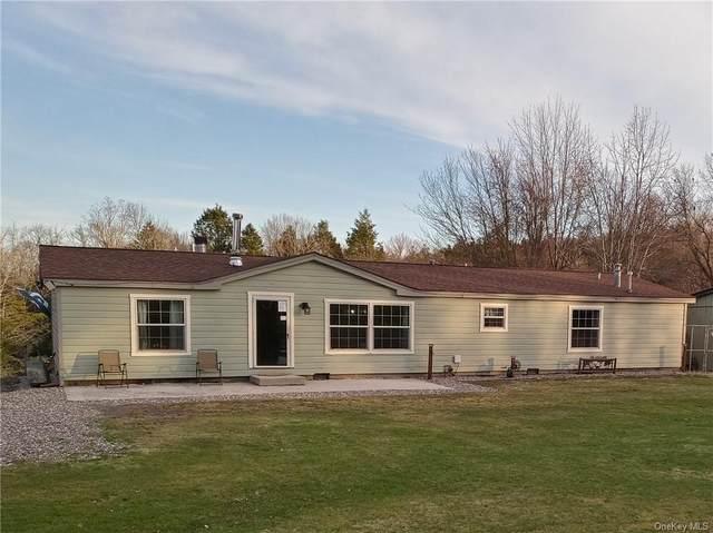 147 Kautz Road, Callicoon, NY 12723 (MLS #H6106061) :: Signature Premier Properties